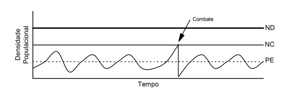 Como funciona e como realizar o Manejo Integrado de Pragas (MIP)