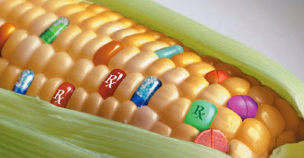 Transgênicos na Agricultura: o guia completo para os profissionais do Agro