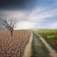 Agostados desde junio.  «Para quienes su actividad y sustento dependen de la climatología…»Autor : Antonio Aguilera
