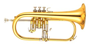 The Best Brass Instruments List in 2021