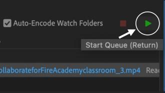 Screenshot of green Start Queue arrow button.