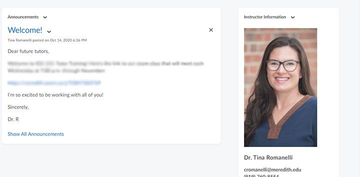 meet instructor widget homepage