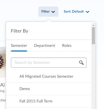 brightspace all courses filter
