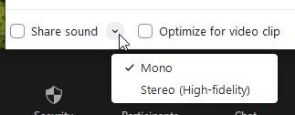 zoom share audio mono stereo