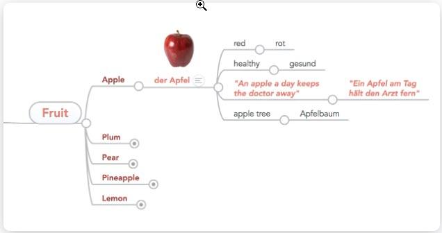 mindmap vocabulary example from mindmeister.com