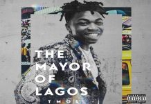 Mayorkun Feelings instrumental the mayor of lagos album