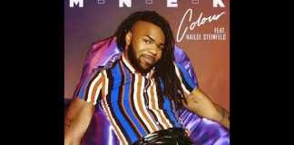 MNEK ft Hailee Steinfeld Colour Instrumental
