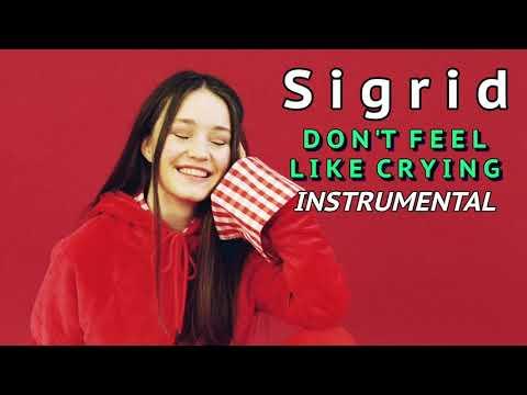 SIGRID - Dont Feel Like Crying Instrumental