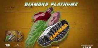 Diamond Platnumz - Kanyaga instrumental
