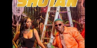 ZLATAN ft TIWA SAVAGE - SHOTAN INSTRUMENTAL