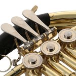 ammoon French Horn B/BB Flat 3 Key Brass Gold Lacquer Single-Row Split Wind Instrument with Cupronickel Mouthpiece Case, Barbell 1 1