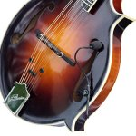 Mandolin Pickup with Flexible Micro-Gooseneck by Myers Pickups