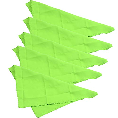 ASNOMY 5Pack 28cm Large Microfiber Cleaning Cloth perfect for Musical Instrument Guitar, Piano, Violin, Sax, Clarinet, Flute (Cleaning Cloth)