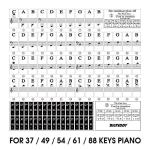 BIGTEDDY – Piano Stickers for 37/49/54/61/88 Key Keyboards – Tranparent Removable Labels for Kids Beginner Learning Music Note Suitable all Brands