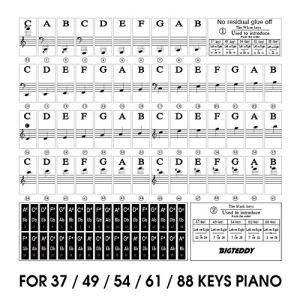 BIGTEDDY - Piano Stickers for 37/49/54/61/88 Key Keyboards - Tranparent Removable Labels for Kids Beginner Learning Music Note Suitable all Brands