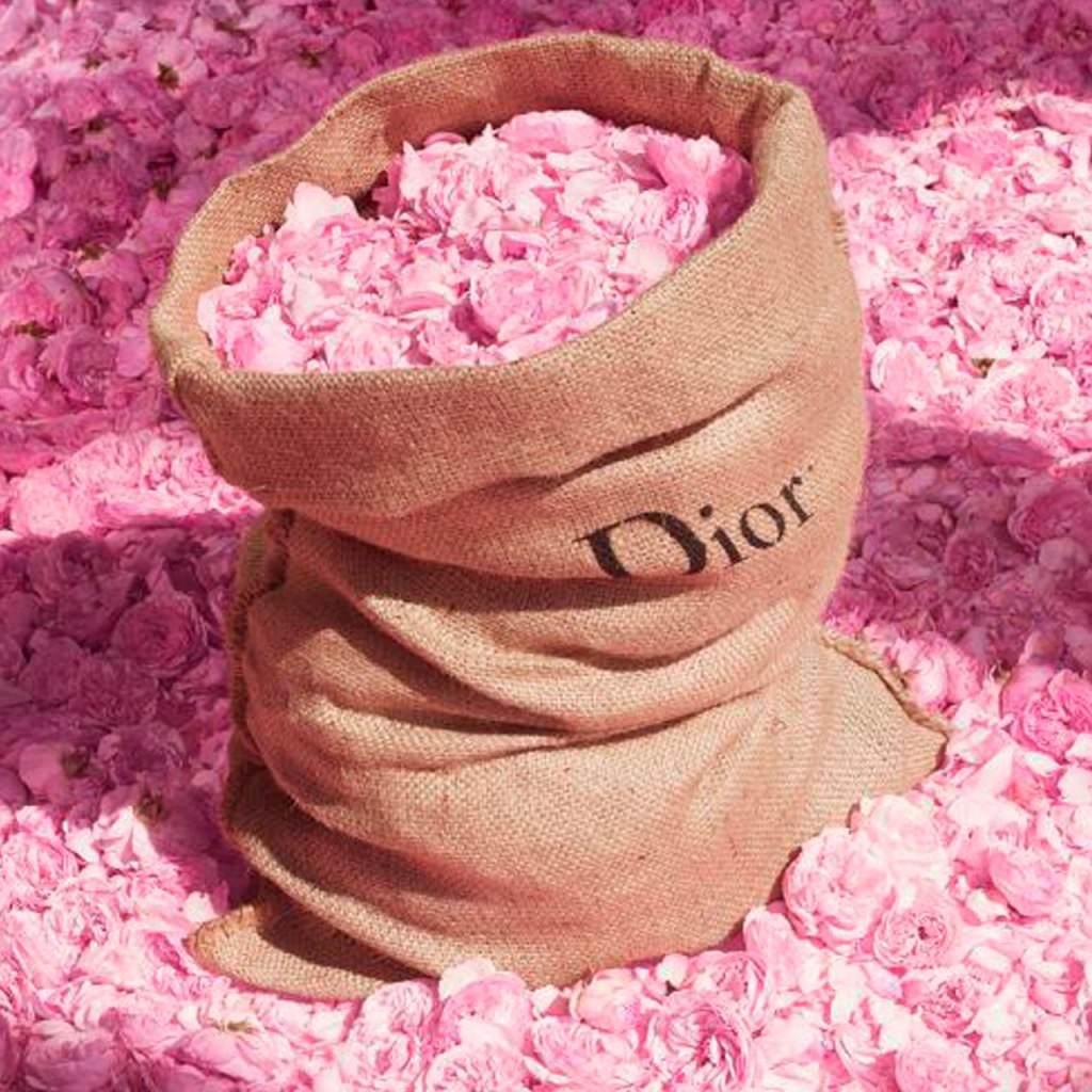 ¿Conoces la verdadera historia detrás de los perfumes de Dior?