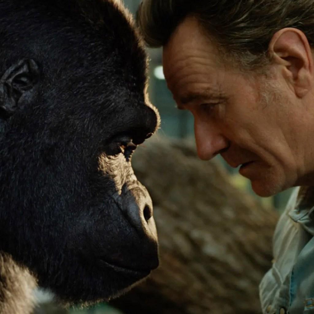 Las mejores películas basadas en historias reales que tienes que ver