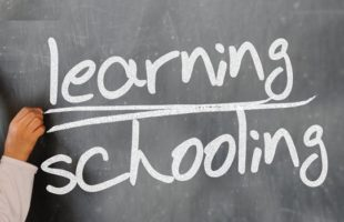 Who Should Make the Educational Decisions for Your Child?