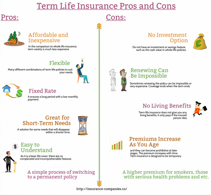Term Life Insurance Pros and Cons Infographic