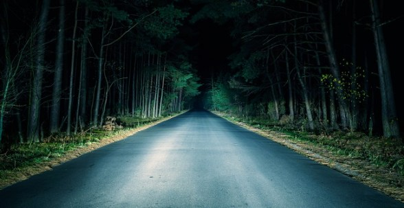 Paved road going through woods at night