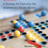 Voluntary Benefits: A Strategy for Capturing the Underserved Middle Market