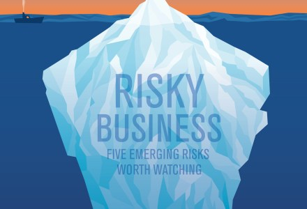 The experts weigh in on emerging risks.