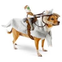 Petco Announces New Star Wars Pet Fans Collection Apparel
