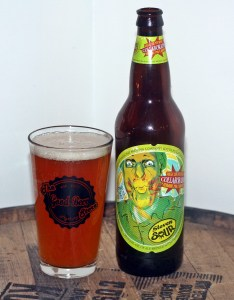 Magic Hat Steven Sour