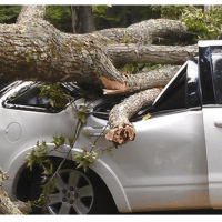 Can Insurance Cover a Broken Windshield? : the Basic Insurance Advice