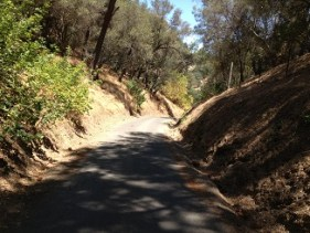 Turner Road east of Amador City is fun to walk or ride.