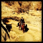Bikers and horse back riders share the NFD trail.