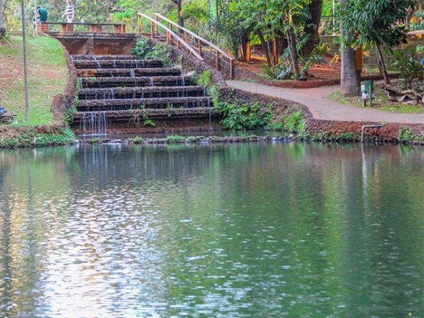 Como aproveitar os parques de Goiânia com as crianças - Bosque dos Buritis