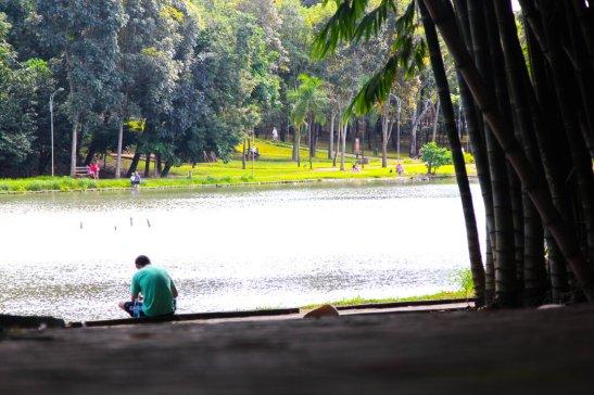 Como aproveitar os parques de Goiânia com as crianças - Parque Areião 2
