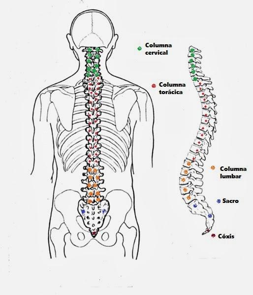 cirugía percutánea. columna