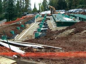 Rows of Orenco pods open for inspection