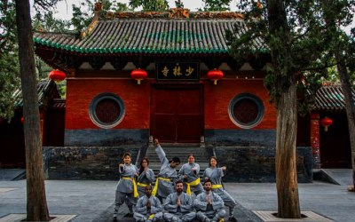2016 Shaolin Temple QiGong Retreat Acupuncture, Tai Chi, Meditation, Herbs, Traditional Chinese Medicine