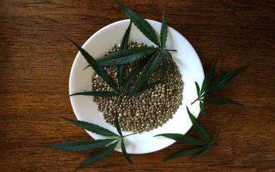 Hemp Seeds in Chinese Herbal Medicine