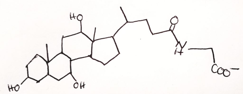 BC4139 Intro to Biochem Week 3.