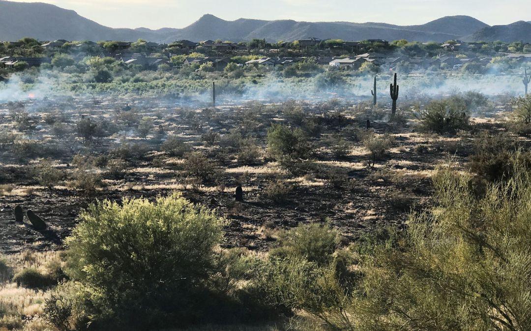 Crews battle 20-acre Anthem brush fire
