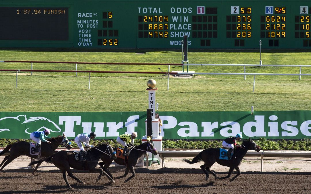 Feud between two brothers over Phoenix horse track boils over