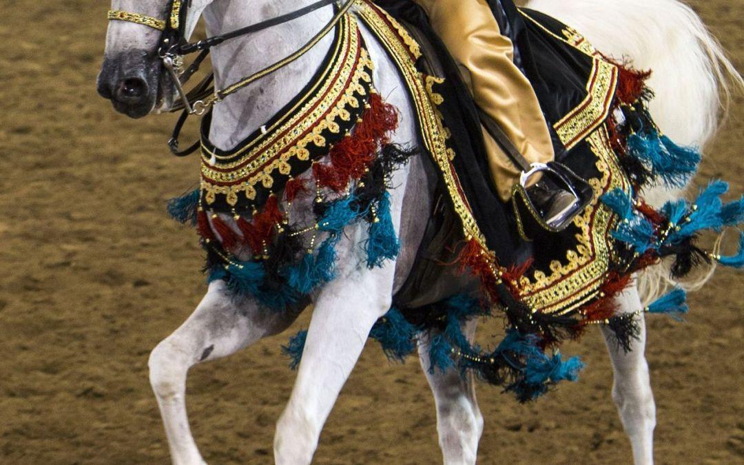 The prestigious Scottsdale Arabian Horse Show is at WestWorld in Feb.