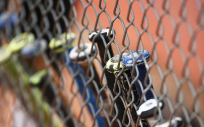 Week 9 Arizona high school softball top performers list