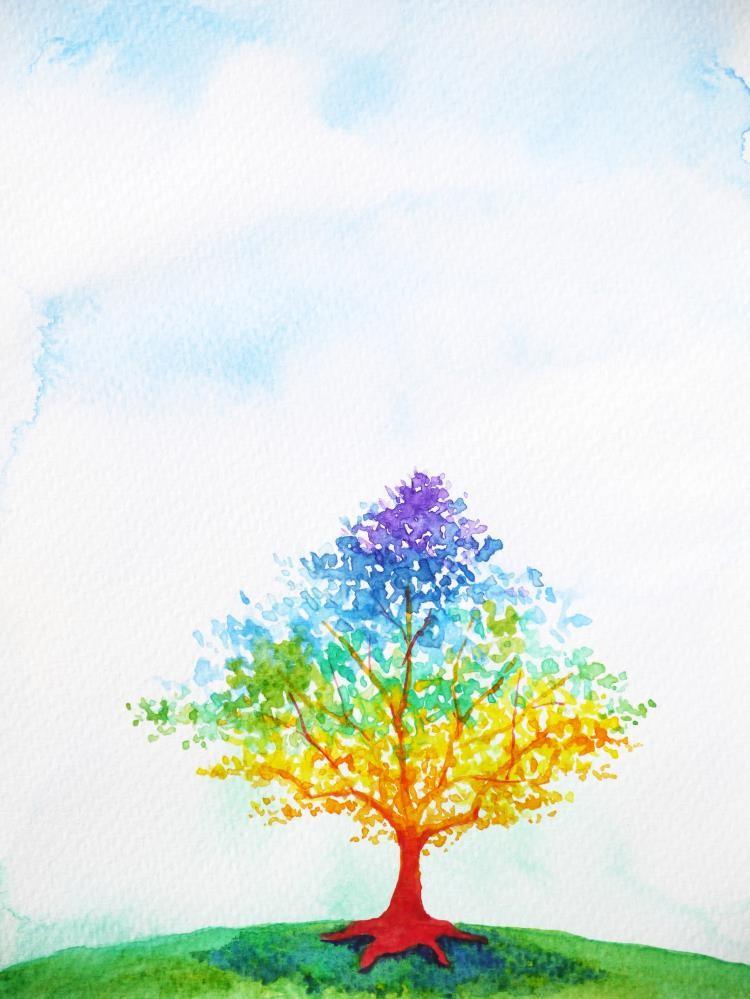 A rainbow tree drawing