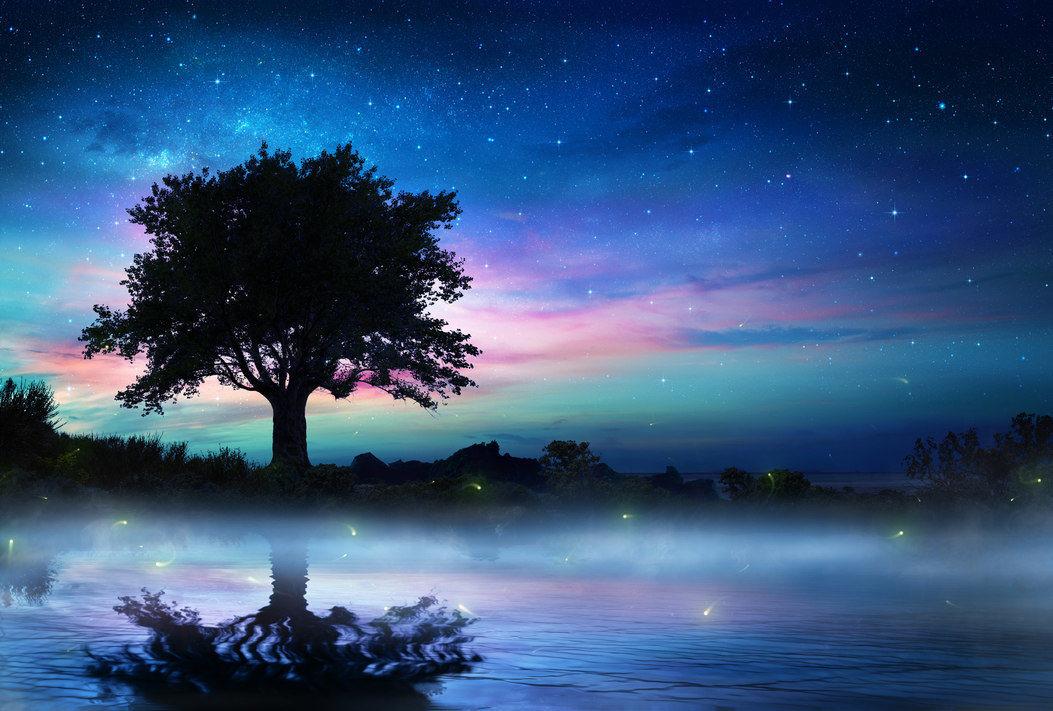 oak tree water stars
