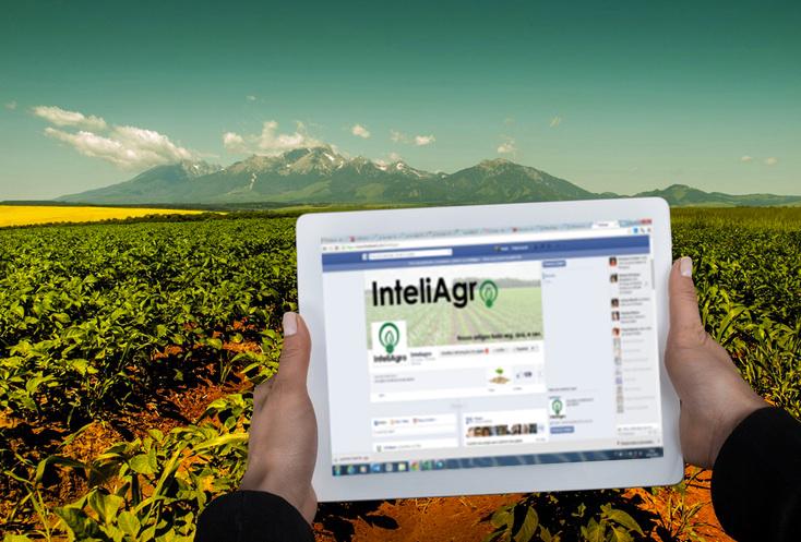 Agricultores rendem-se ao Facebook