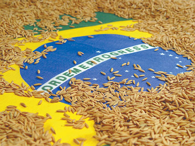 A agricultura merece um governo melhor