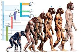 Darwinism Poses a Threat to Society