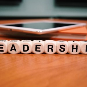 Becoming Bigger than Your Role – Leadership Development Online Course
