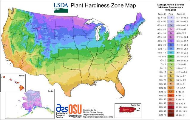 USDA Plant Hardines Zone Map
