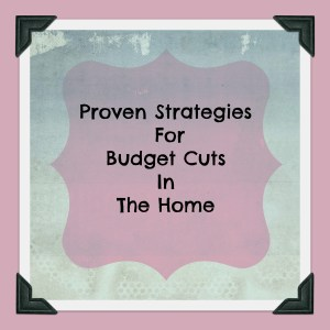 Proven Strategies For Budget Cuts In The Home Intelligentdomestications.com